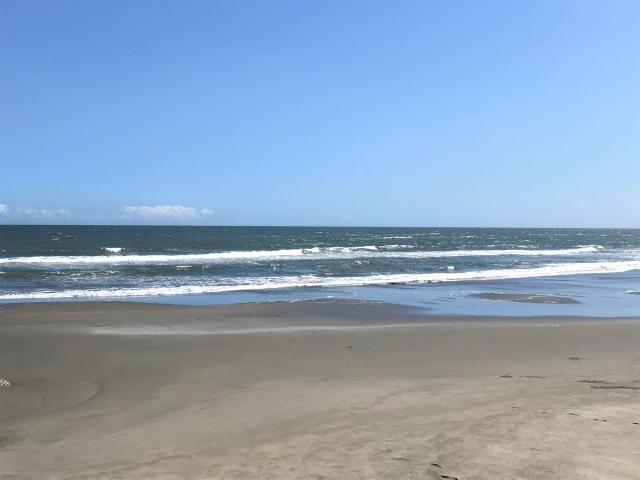 千葉の浜辺